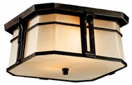 Kichler North Creek Outdoor Ceiling Light