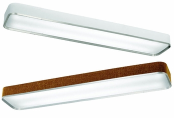 Kichler 10425 Pira Rectangular Flush Mount Light Fixture
