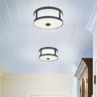 Transitional Ceiling Lights
