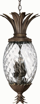 Hinkley 2222PZ Pearl Plantation 4 Light Tropical Pendant
