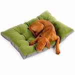 "Bowsers-""Rainforest "" -  Eco-Futon Dog Bed"