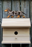 Dachshund (smooth) Bird House-Blue Dapple