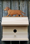 Dachshund (smooth) Bird House-Red