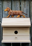 Dachshund (smooth) Bird House-Red Dapple