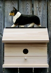 Welsh Corgi (pembroke) Bird House-Tri