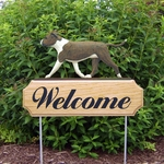 Am. Staffordshire Terrier (natural) DIG Welcome Stake-Brindle/White