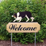 Border Collie DIG Welcome Stake-Black Tri