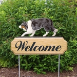 Border Collie DIG Welcome Stake-Blue Merle