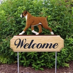 Boxer (natural) DIG Welcome Stake-Fawn