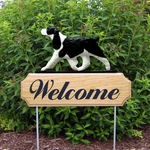 English Springer Spaniel DIG Welcome Stake-Black
