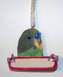 Ornament Parakeet