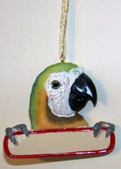 Ornament Macaw