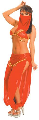 Genie Belly Dancer Costume