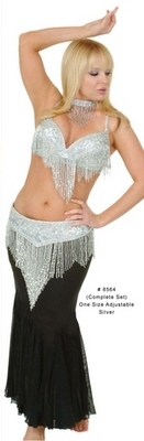 Sparkling Silver Belly Dancer Costume Set