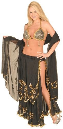 Belly Dancer Dancing costume