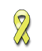 Spina Bifida Aware Month