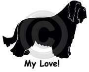 Bearded Collie My Joy! My Love! My Life! Long Sleeve T-Shirt