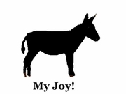 Donkey My Joy! My Love! My Life! Long Sleeve T-Shirt