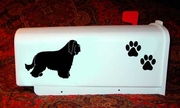 Bearded Collie Mail Box