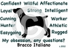 Bracco Italiano  Obsession Long Sleeve T-Shirt