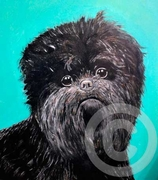 Affenpinscher Original Art Cards - Pack of Five
