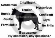 Beauceron Obsession Long Sleeve T-Shirt