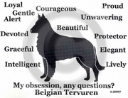 Belgian Tervuren Obsession Long Sleeve T-Shirt