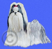 Shih Tzu Original Artwork Greeting cards - Set of Five