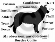 Border Collie Obsession T-Shirt