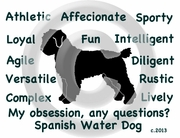 Spanish Water Dog Obsession Long Sleeve T-Shirt
