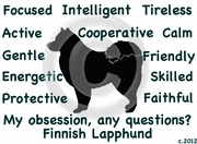 Finnish Lapphund Obsession Long Sleeve Tshirt