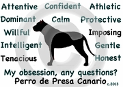 Perro de Presa Canario Obsession Long Sleeve T-Shirt