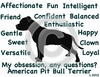 American Pitbull Obsession Long Sleeve Tshirt