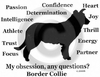 Border Collie Obsession Long Sleeve T-Shirt