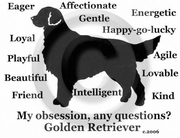 Golden Retriever Obsession T-Shirt