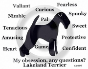 Lakeland Terrier Obsession T-Shirt