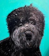 Affenpinscher Original Art Print