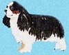 Cavalier King Charles Spaniel Original Artwork Greeting cards - Set of Five