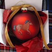 Appaloosa Hand Painted Christmas Ornament