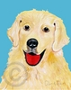 Golden Retriever Cutie Original Artwork Greeting cards - Set of Five