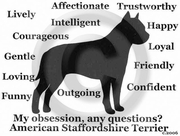 American Staffordshire Terrier Obsession T-Shirt