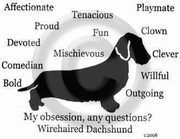 Dachshund Wirehaired Obsession T-Shirt