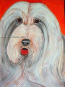 Bearded Collie Original Artwork Print