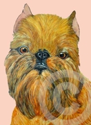 Brussels Griffon Original Art Greeting Card - Pack of Five