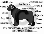 Newfoundland Obsession Sweatshirt