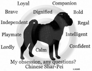 Chinese Shar-Pei Obsession Long Sleeve T-Shirt