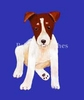 Jack Russell Terrier Original Art T-Shirt
