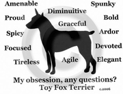 Toy Fox Terrier Obsession T-Shirt