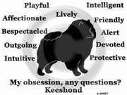Keeshond Obsession T-Shirt