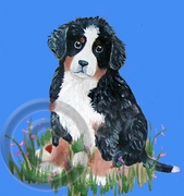 Bernese Mountain Dog Original Artwork Print
